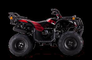 ATV150 CON REVERSA