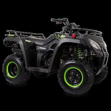 ATV250NEGRA